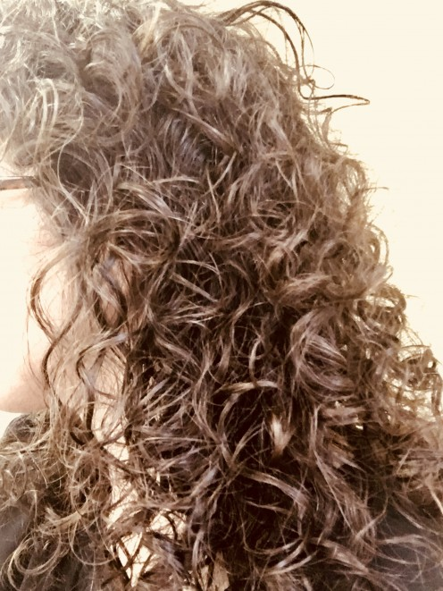 Ouidad vs. DevaCurl; Which Curly Hair Cut and Style Method is Best?