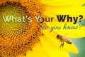 What's Your 'Why?' Do You Know? Questions to Find Your Purpose