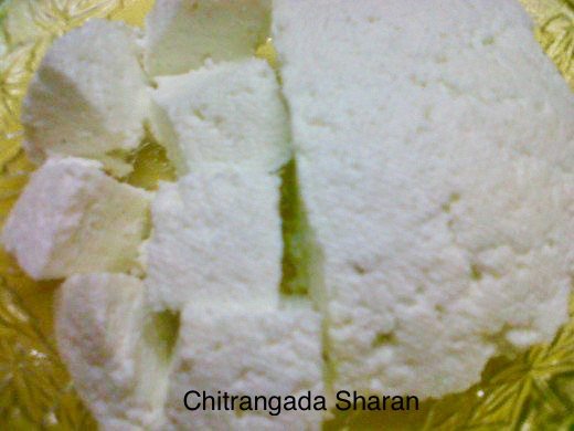 Home made Cottage cheese or Paneer