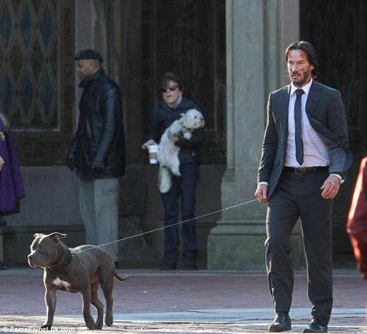Keanu Reeves and his John Wick pal, blue pitbull named Buster