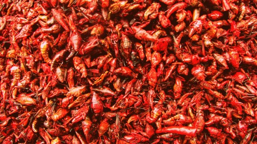 Grasshoppers by their thousands in a food market in Mexico.