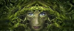 Nicole Canfield's Paranormal & Spiritual FAQ