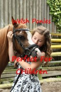 The Perfect Pony for Children-Welsh Ponies