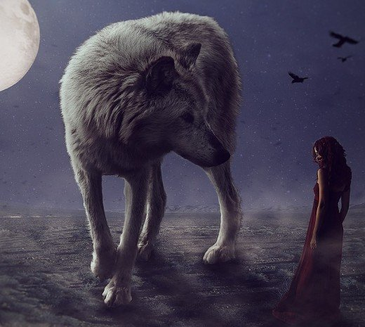 Dreaming of a  wolf symbolizes your sexual boldness