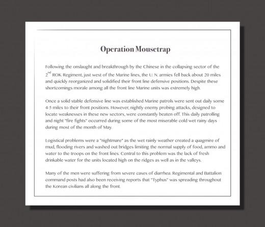 I've copied this summary verbatim from marzone.com.