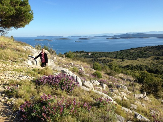 Beautiful smell of sage in the air while going up the hill. Kornati islands in the background.