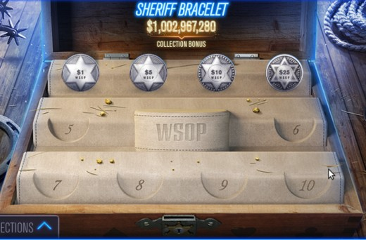 An example of a bracelet collection. These are the chips for the Sheriff bracelet.