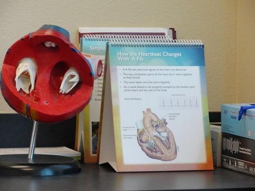 Heart chart.