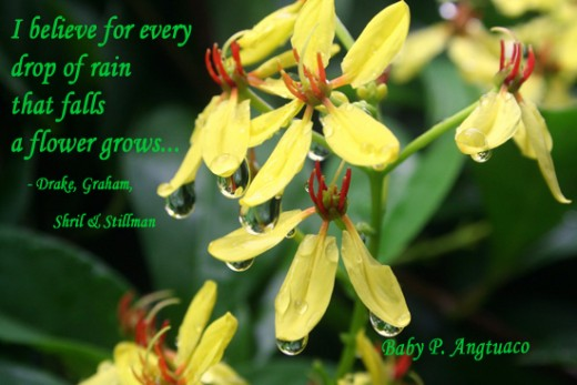 for every drop of rain that falls