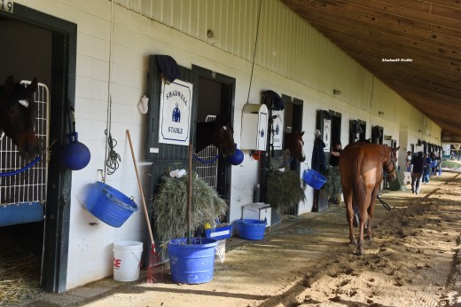 Shadwell Stable