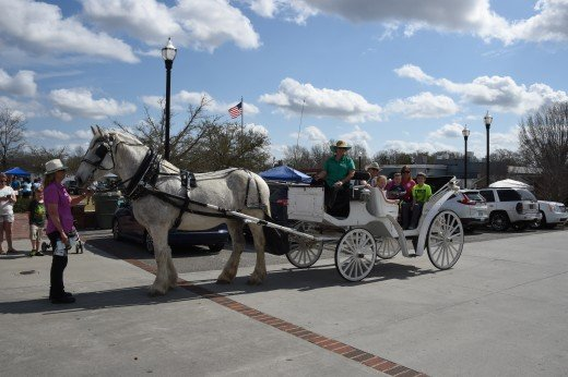 Camden Carriage Company offered rides to attendees.