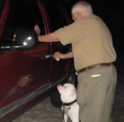 Bruno the bulldog and Doc