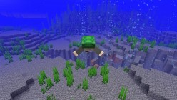 'Minecraft' Update 1.13: New Blocks and Features