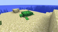 'Minecraft' Update 1.13: New Aquatic Mobs Have Arrived