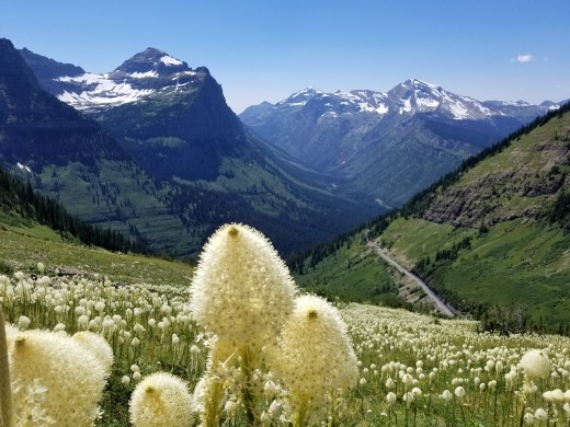 One of my favorite mountainous places is Glacier Park. So much magic to be found in these mountains.