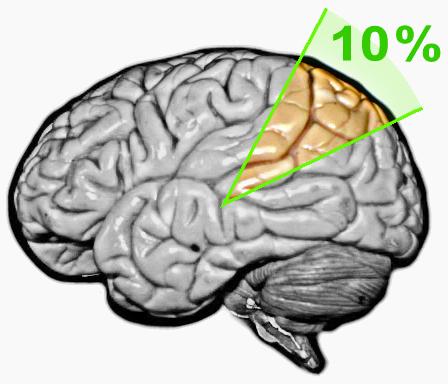 Human Brain usage