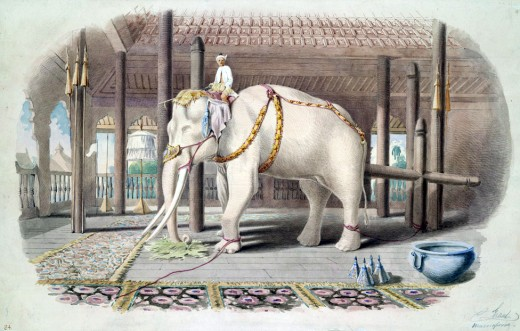 """Lord White Elephant"" Watercolor and Ink by Colesworthey Grant"
