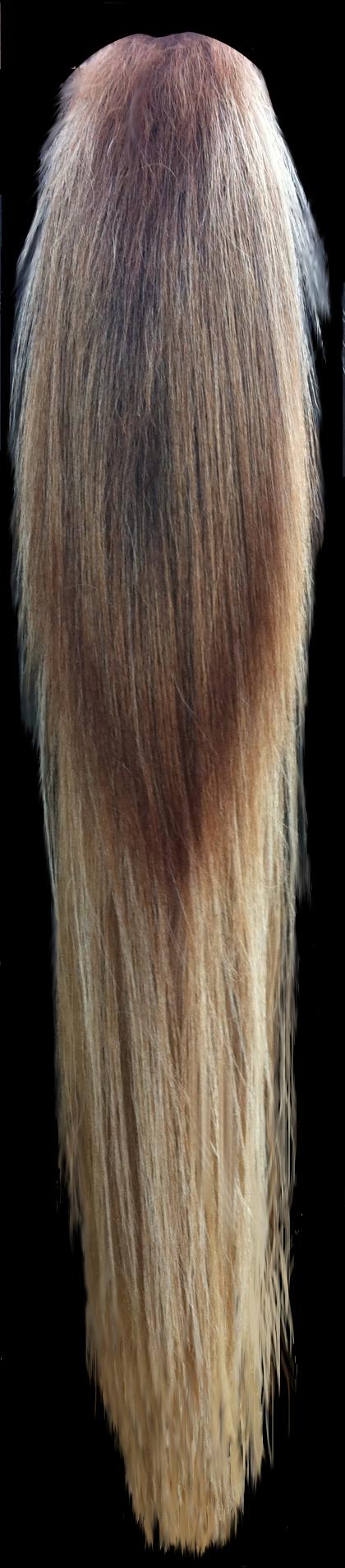 Look at this beautiful mane of blonde hair!