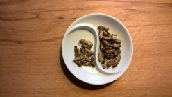 Edible Insects - The Future of Food