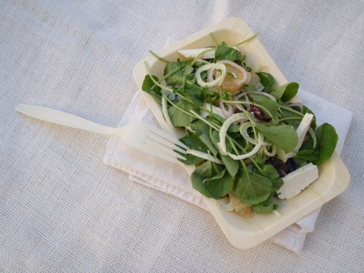 Fennel and Watercress Salad
