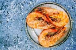 U.S. Demand Is Driving Indoor Shrimp Production