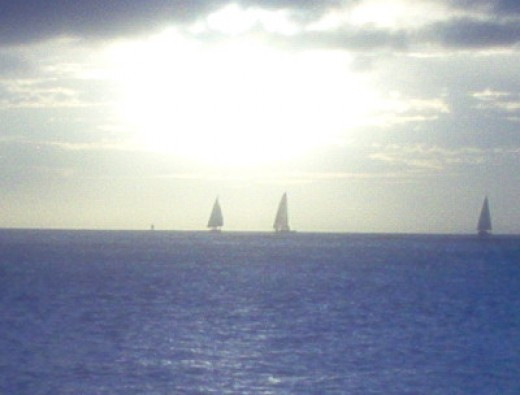 Sailboats near Oahu