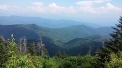 Smoky Mountain Glimpse