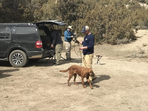 Crime Watch Daily and member of Scent Evidence K-9 assisting with search for Breezy and Riley.