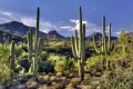 Exploring Top Resorts in Scottsdale, Arizona