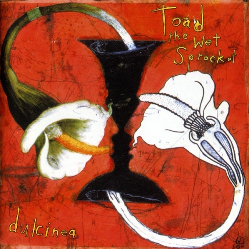 """Dulcinea"" by Toad the Wet Sprocket"