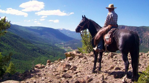 Rainbow Trout Ranch is nestled in the San Juan Mountains with the Rio Grande running through the property.