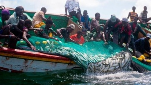 It is humble artisanal fishermen such as these who provide much of the food supplies of West Africa.