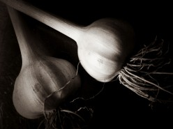 Herbal Remedies: Garlic for Blood Pressure and Artery Health