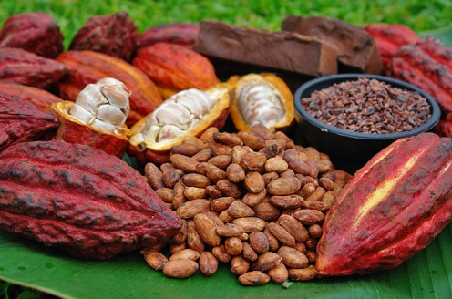The Beginning of Chocolate