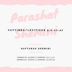 Parashat Shemini