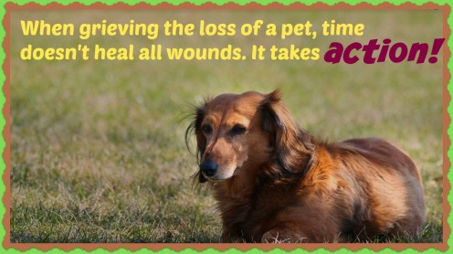 How to Grieve the Loss of a Pet and Say Goodbye to Your Friend