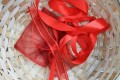 Scarlet Ribbons: Family Fun Activity and Sing-A-Long