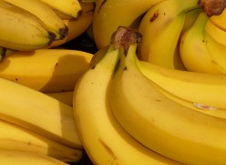 Details About Bananas