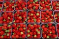 Details About Strawberries