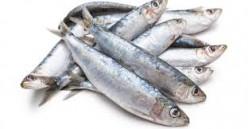 Two Bucks for Sardines