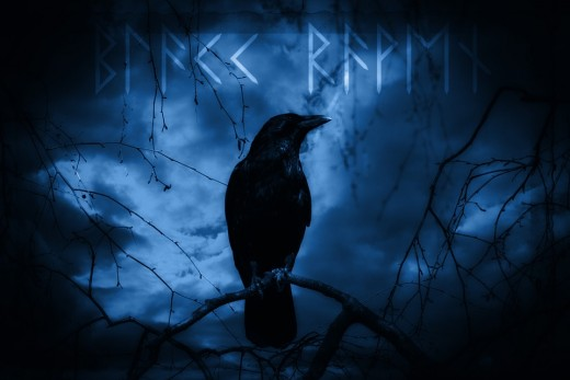 The raven is revered in Norse mythology because of its association with Odin and the Valkyries.