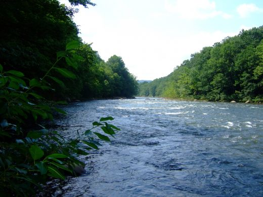But let justice roll down like waters and righteousness like an ever-flowing stream. (Amos 5:24)