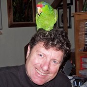 Terry L Wilson profile image