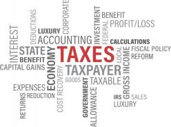 Are American Tax Rebates Useful?