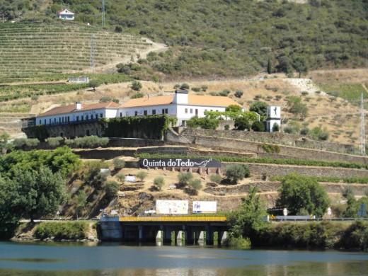 Quinta do Tedo.