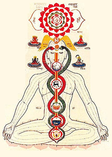 The symbolism of the Kundalini is uncannily similar to the shape of the twisting DNA helix.