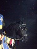 Medieval Times - A Review