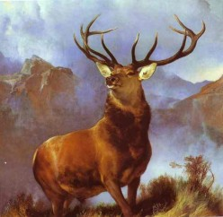 Animals in Artwork: From Prehistoric to Present