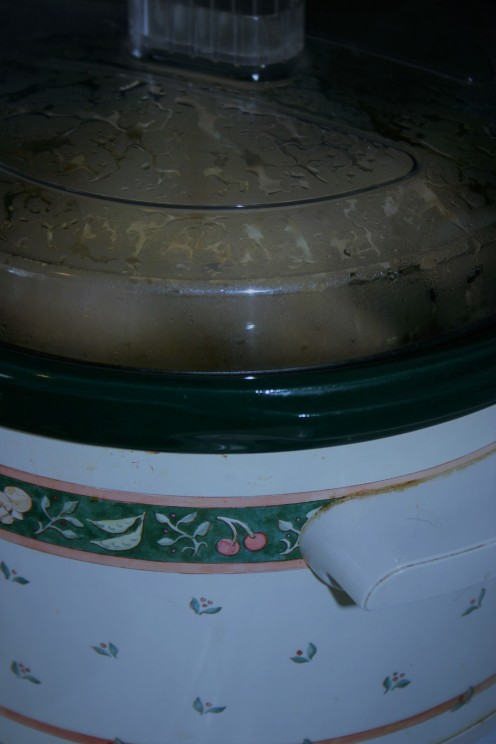 Cooking in a crockpot can save you plenty of money!
