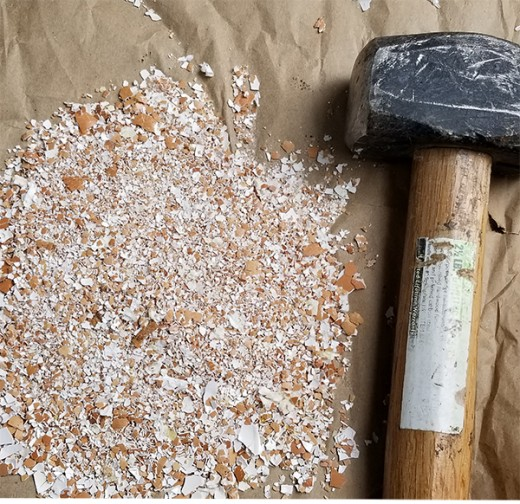 Option #5: Use a small heavy mallet to pound the eggshells to crush them. NOTE: Cover the eggshells with another layer of paper before hammering, to avoid eggshell pieces from flying around.